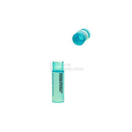 Influenzinum 200K doses - Korsakov dilution granules homeopathy Boiron