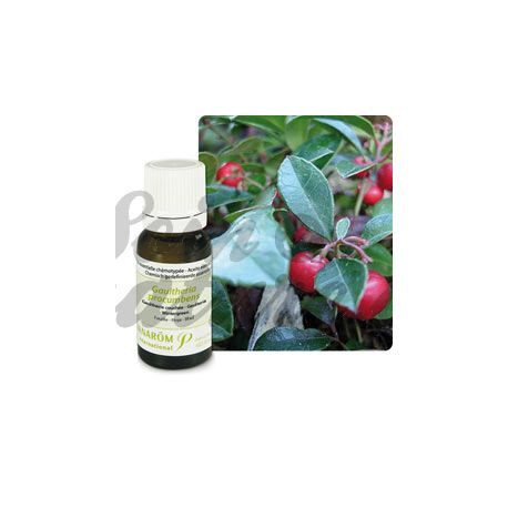 PRANAROM ESSENTIAL OIL 10ML Wintergreen LYING GAULTHERIA PROCUMBENS