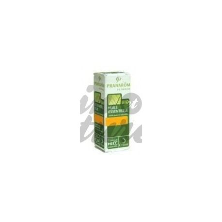 Organic essential oil Citronella 10ml Pranarom Madagascar