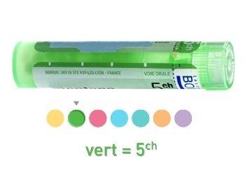 ARNICA MONTANA 4CH 5CH 7CH 9CH 12CH 15CH 30CH Granules - Tube de 4g HOMEOPATHIE BOIRON