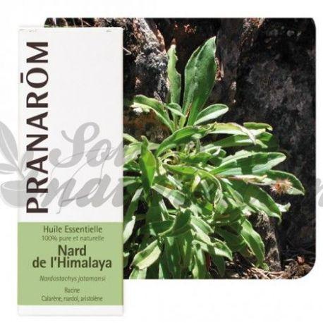 etherische olie Nard PRANAROM 5 ml