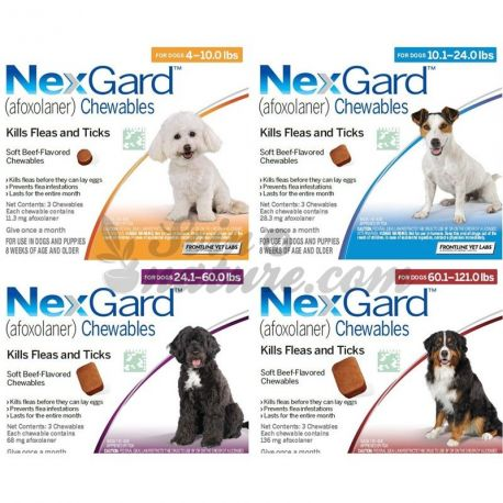 10-25kg NEXGARD Afoxolaner gos de 68 mg