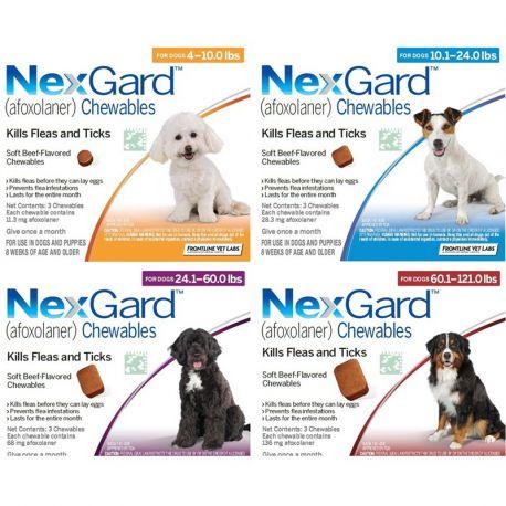 10-25kg NEXGARD Afoxolaner perro de 68 mg