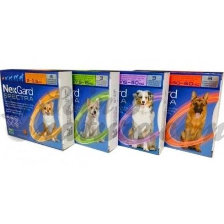 NEXGARD SPECT 9 mg / 2 mg perro 2-3,5kg B / 3