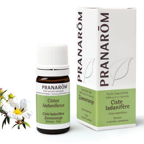 Rockrose قريضة من الضروري النفط ladanifère ladaniferus PRANAROM 5ML