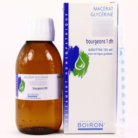 MACERAT GLYCERINE BOURGEONS CASSIS 1DH Ribes nigrum Gemmothérapie