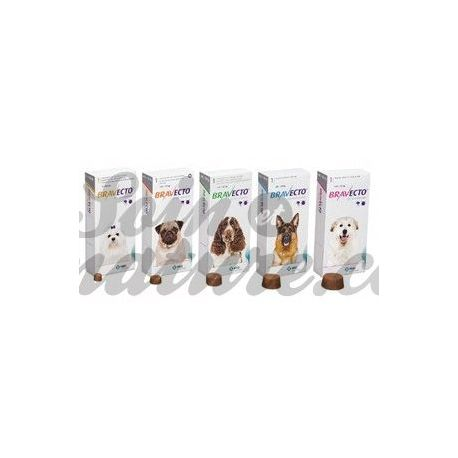 BRAVECTO kleine hond anti-tick 4.5-10kg vlooien Tablets