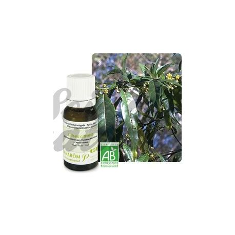Pranarom Essential Oil 10ml Lemon Litsée
