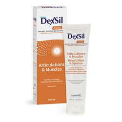 DEXSIL Gel articulation MSM/Glucosamine 100ml