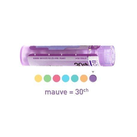 30CH Granules Tube HOMEOPATHIE BOIRON