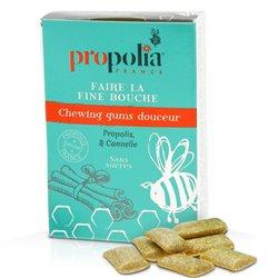 Propolia CHEWING GUM Propolis & Cannelle B/20