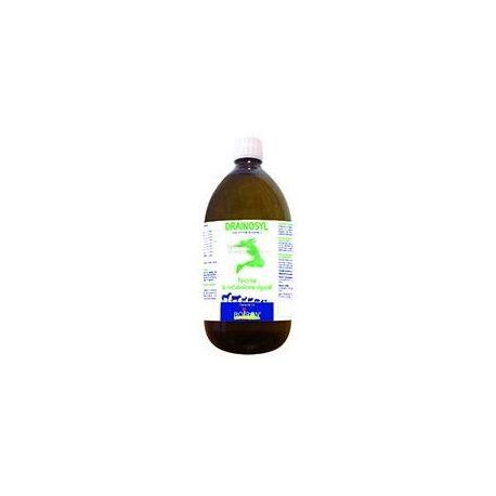 PVB DRENAGEM GA Boiron garrafa de 1 L (PVB DRENAGEM HEPATIC DRENAGEM DA PELE + PVB)