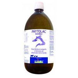 PVB PHYTOLAC GA MUND Boiron Bottle 1L