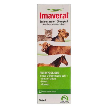 IMAVERAL antimycosique solution cutanée pour chats chiens