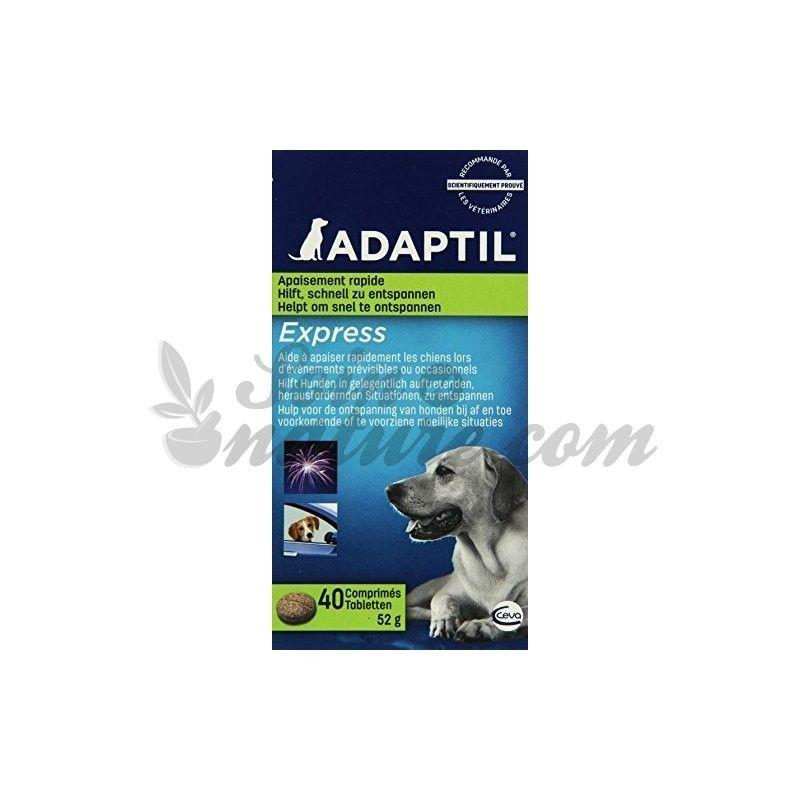 ADAPTIL EXPRESS Comprimés stress chien Ceva en pharmacie bio