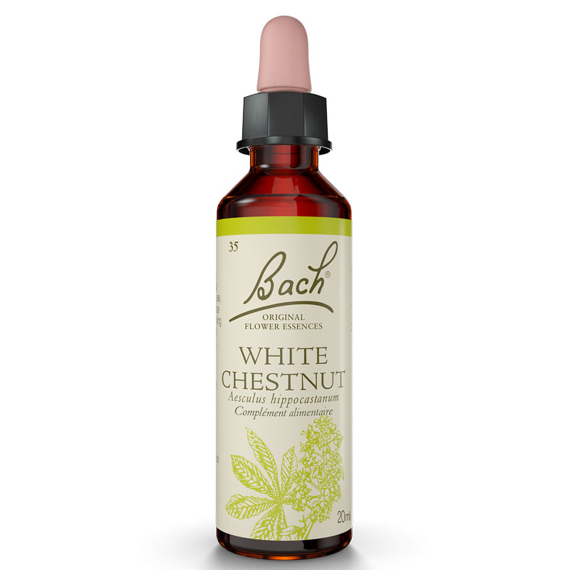 Bach Original Flower Remedies White Chestnut Chestnut India Bach