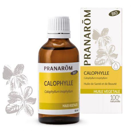 Aceite vegetal Callophyla BIO (Tamanu) PRANAROM
