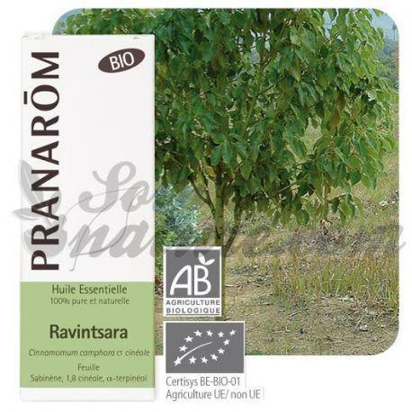 Huile essentielle BIO Ravintsara PRANAROM 10ml