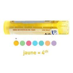 PEAU 4CH 5CH 7CH 9CH 12CH 15CH 30CH 8DH granulen Boiron homeopathische