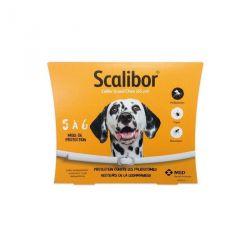 SCALIBOR COLLIER GRAND CHIEN 65 CM