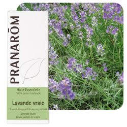 ESSENTIAL OIL Lavender Lavandula officinalis true 10 ml PRANAROM