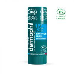 DERMOPHIL INDIEN stick lèvres protection quotidien 4g