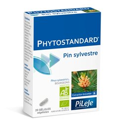 PhytoPrevent Phytostandard PINE BIO 20 كبسولة
