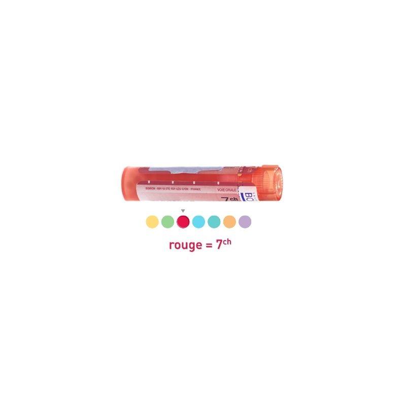 ignatia amara 15 ch pour maigrir