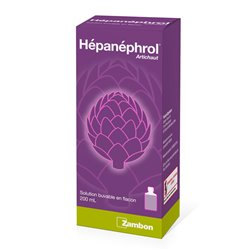 HEPANEPHROL Extrait Artichaut flacon 200ml