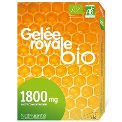 NUTRISANTE gelée ROYALe Bio 10 AMPOULES