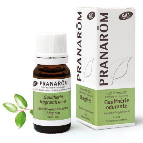Wintergreen esencial BIO aceite del gaulteria olor PRANAROM fragrantissima