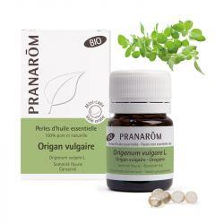 Orégano óleo essencial de Origanum vulgare L.