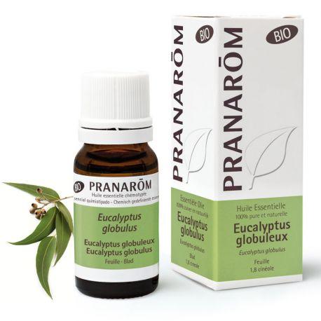 Organic essential oil Eucalyptus globulus 10ml PRANAROM