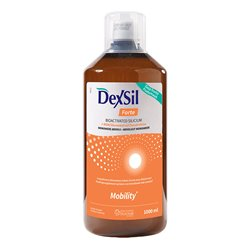 Dexsil Joints Glucosamine Chondroitin MSM Fortes 1000ml