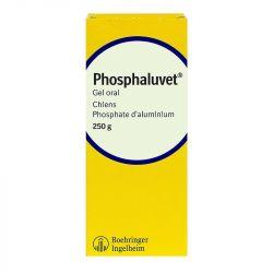PHOSPHALUVET Gelée orale protection gastrique chien 250 g