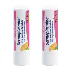 Lipstick Dermoplasmine (Homéostick) MARIGOLD LOT VAN 2 Boiron