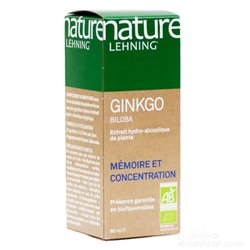 NATURE Lehning Ginkgo biloba AB extrato hidroalcoólico 60ml