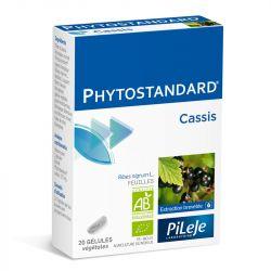 Phytostandard CASSIS BIO 20 gélules Pileje