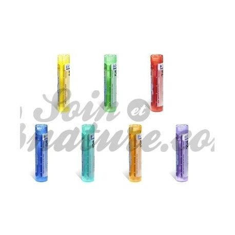 Cantharis C 5 C 4 7 C 9 C C 15 C 30 Granulat Rohr Homöopathie Boiron