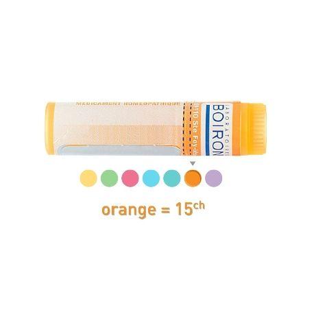 Fucus vesiculosus 15C pellets Dose homeopathy Boiron