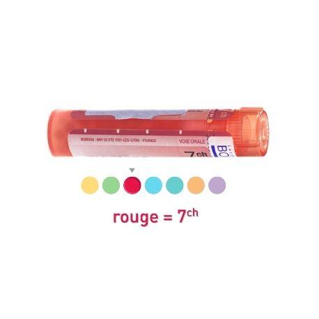 ACONITUM FEROX 7CH Granules Tube HOMEOPATHIE BOIRON