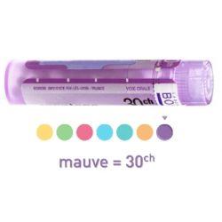 ZZZZZ 5CH Granules Tube HOMEOPATHIE BOIRON