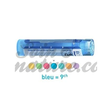 ALLIUM URSINUM 9CH Granules Tube HOMEOPATHIE BOIRON
