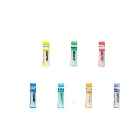 Cantharis 15CH 30CH 7CH 9CH glóbulos homeopática Boiron