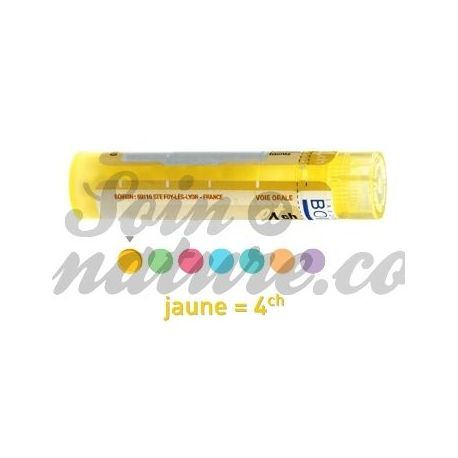 4CH Granules Tube HOMEOPATHIE BOIRON