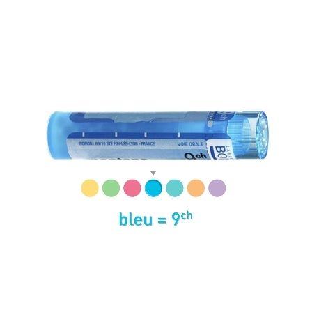 9CH Granules Tube HOMEOPATHIE BOIRON