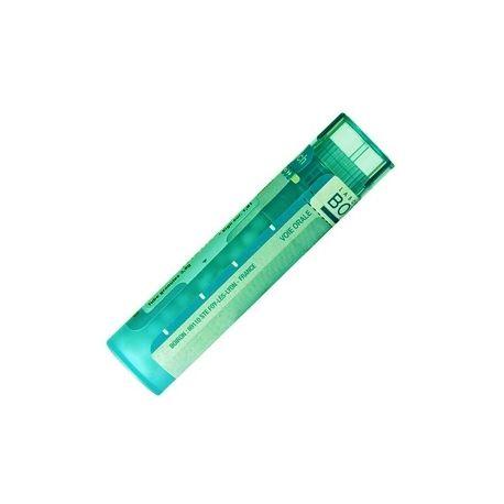 SEPIA OFFICINALIS 200K 1000K 10000K Tube granules HOMEOPATHIE BOIRON