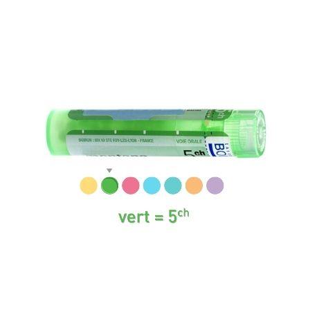 5CH Granules Tube HOMEOPATHIE BOIRON