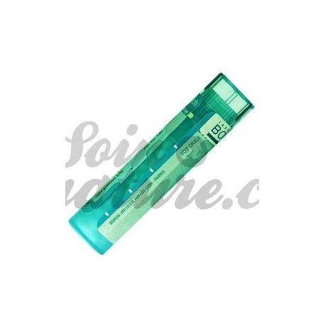 CALCAIRE VERSAILLES (DE) 8DH Granules Tube HOMEOPATHIE BOIRON