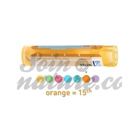 Asarum EUROPAEUM 15C homeopathic pellets Boiron